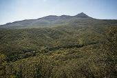 green hills in the Crimea