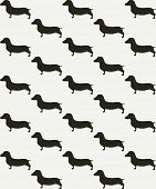 image of hound dog  - Seamless pattern with cute dachshunds - JPG