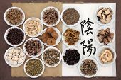 Chinese herbal medicine selection with calligraphy script of yin and yang symbols on rice paper on an old notebook over brown paper background. Translation reads as yin yang.