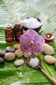 spa supplies with orchid, oil, candle , salt in spoon ,on banana leaf