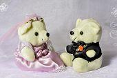 Bride Groom Bear