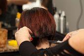 Hairdresser Cuts Hair