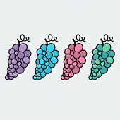 Hand-drawn grape - illustration on the theme of the summer and autumn - farm, fruit, natural. Pink,