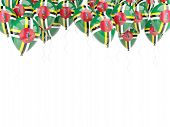 Balloon Frame With Flag Of Dominica