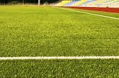 Green Football Field Grass. Stadium