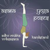 Adho Mukha Vriksasana. Handstand.