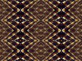 Bird Feathers Pattern