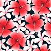 foto of hibiscus  - Red tropical hibiscus flower with frangipani seamless pattern  - JPG