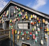 pic of lobster  - Maine lobster pound shack is decorated with old buoys - JPG