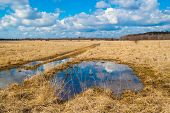 picture of groundwater  - landscape flooded meadows in early spring - JPG