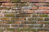 stock photo of polonnaruwa  - Brick wall texture captured in ancient Polonnaruwa city in Sri Lanka - JPG