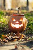 foto of jack-o-lantern  - Angry halloween jack - JPG