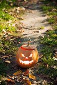 image of jack o lanterns  - Angry halloween jack - JPG