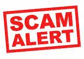 Постер, плакат: Scam Alert