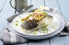 picture of halibut  - grilled halibut  - JPG