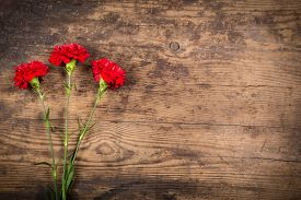 foto of carnations  - three carnation flowers on wooden background with empty space - JPG