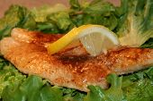 stock photo of flounder  - A lightly seasoned fish with a slice of lemon - JPG