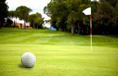 Golf Ball Near The Putting Green