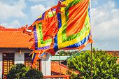 Traditional Festival Flags Of Vietnam Five Elements Flag poster