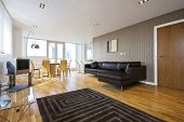 open plan designer livingroom with modern furniture