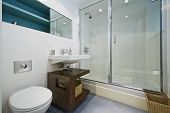 contemporary bathroom with corner shower and decorative elements