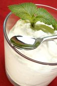 Homemade Organic Yogurt With Some Lemon Mint