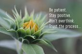 Inspirational Motivational Quote-be Patient, Stay Positive, Do Not Overthink, Trust The Process. A B poster