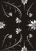 Black Flower Background