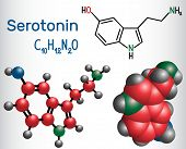 Serotonin Molecule, Is A Monoamine Neurotransmitter. Structural Chemical Formula And Molecule Model. poster