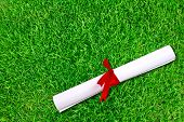 Diploma wrapped with a red ribbon on fresh spring green grass