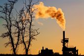 pic of noise pollution  - silhouette of power plant with smoke at dusk and dead tree - JPG
