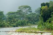 dramatic tropical landscape with rope bridge during storm, sumatra, indon?sia