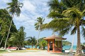tropical island beach with palm tree and canoe, angthong marine park, Thailand