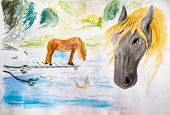 Horses At The Watering, Drawing Watercolor. Drawing Horses poster
