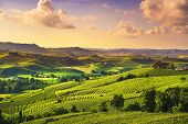 Langhe Vineyards Sunset Panorama, Near Barolo, Unesco Site, Piedmont, Northern Italy Europe. poster