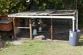 stock photo of hen house  - A hand built chick coup - JPG