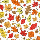 Autumn Fall Foliage Leaves Seamless Pattern Hand-Drawn Back to School Leaf Doodle Vector Illustratio