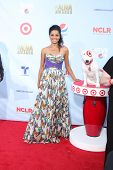 LOS ANGELES - SEP 16:  Victoria Rowell arrives at the 2012 ALMA Awards at Pasadena Civic Auditorium