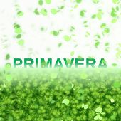 A seasonal word/phrase from a text effect series. Primavera is in Portuguese-BR language and it mean
