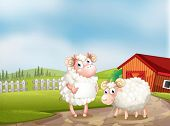 Illustration of a sheep at the farm holding an empty signboard