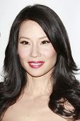 BEVERLY HILLS - JUL 12:  Lucy Liu at the Disney ABC Television Group Summer All Star party on July 1