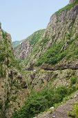 View Of Tara River Canyon poster