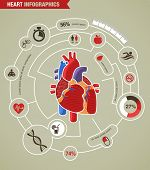 picture of ecg chart  - Human Heart health - JPG