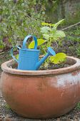 Watering Can And Flower Pot