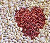 Adzuki Canellini Beans