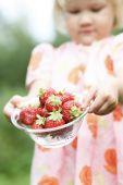 Strawberries Held By Girl.