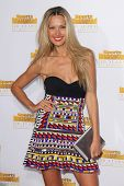 LOS ANGELES - JAN 14:  Petra Nemcova at the 50th Anniversary Of Sports Illustrated Swimsuit Issue at
