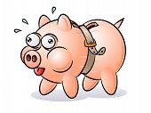 Piggy bank with tight belt