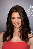Ashley Greene at the Chrysalis Butterfly Ball 10th Anniversary Event, Private Residence, Los Angeles
