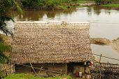 Peruvian Amazonas, Indian Settlement